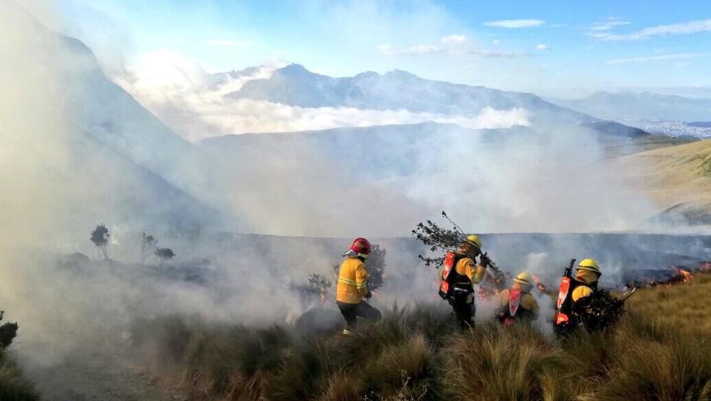 Cuerpo de Bomberos controla incendio forestal en cerro Atacazo