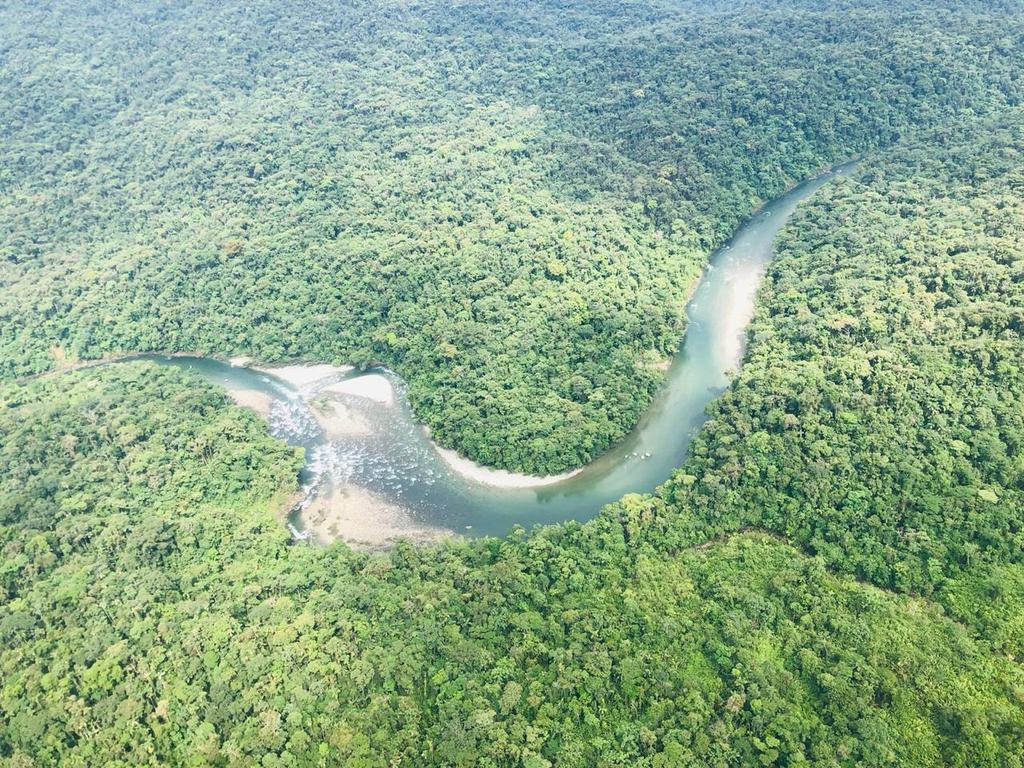 La zona boscosa dificultó las tareas de búsqueda de los grupos de rescate.