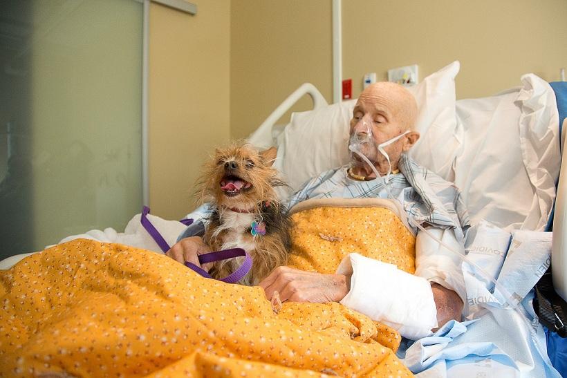 Un hombre cumple su último deseo: despedirse de su perro