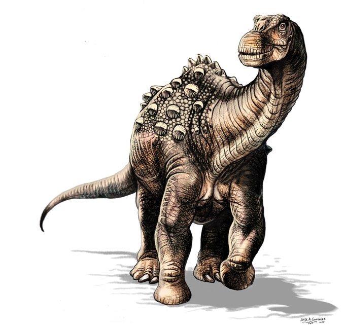 Hallan primeros fósiles de dinosaurio en Ecuador