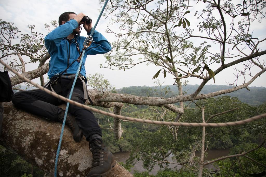 Apoyado en las ramas de un árbol, a 40 metros del suelo, Nicolas Moulin inspecciona el horizonte con sus prismáticos de entomólogo en busca de un insecto muy preciado, oculto en la selva de color esmeralda. Foto: AFP.
