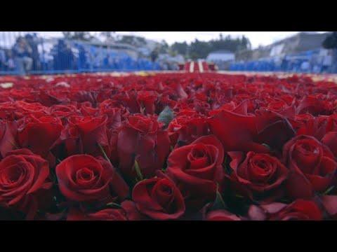 Ecuador busca título Guinness con 500.000 rosas