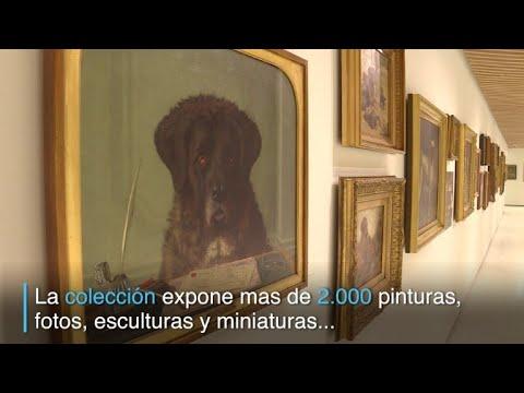 Los perros ya tienen un museo que los homenajea