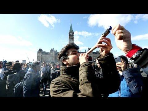 Senado de Canada aprobó legalización de marihuana