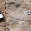 La primera huella humana descubierta en Alathar y su correspondiente modelo de elevación digital.