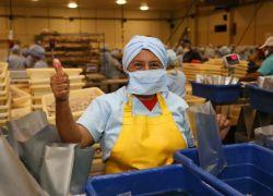 El PIB ecuatoriano cayó en 2020 un 7,8%, con un fuerte impacto en el sector comercial. Foto: archivo Enfoque