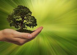 El 22 de abril se conmemora el Día Mundial de la Tierra.