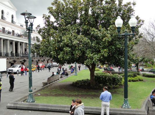 Plaza de la Independencia. Foto: Quito Alcaldía