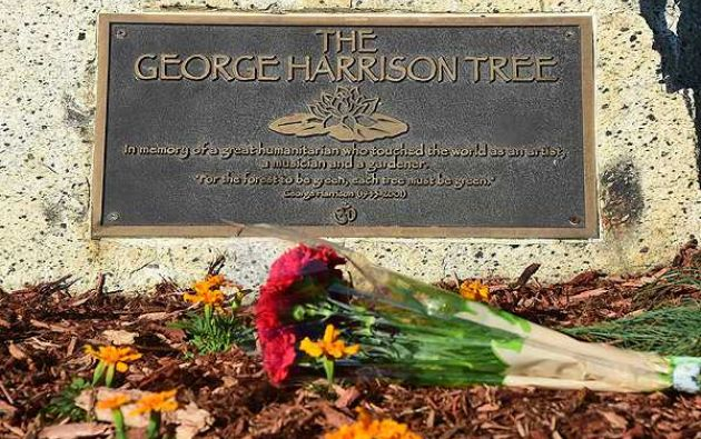 La placa que acompaña al árbol plantado en honor al exBeatle. Foto: AFP
