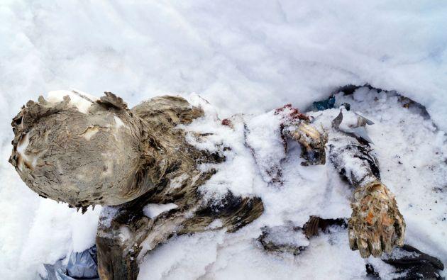 Los cuerpos fueron hallados en la cima del Pico de Orizaba, también conocido como Citlaltépetl. Foto: REUTERS