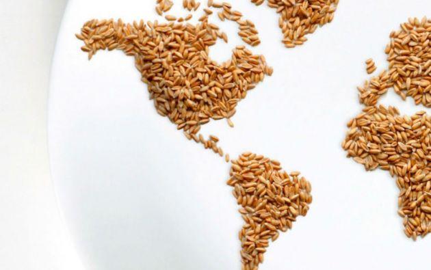 Una de las herramientas que tiene América Latina para luchar contra la desnutrición es el Plan para la Seguridad Alimentaria, Nutrición y Erradicación del Hambre 2025.