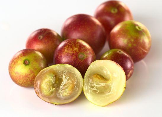El camu-camu (Myrciaria dubia) está considerada como la fruta más rica en vitamina C del planeta.