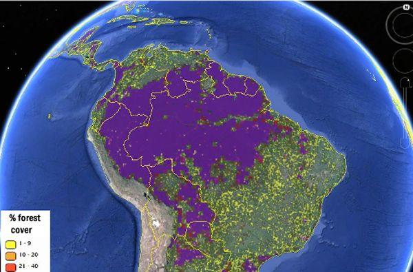 Los mapas permiten localizar la masa de bosques y selvas del planeta con una precisión sin precedentes hasta ahora.