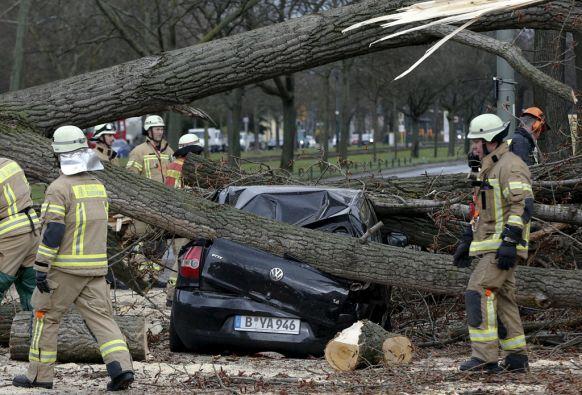 Una mujer y dos hombres perdieron la vida cuando los vehículos en los que viajaban fueron alcanzados por un árbol. Foto: REUTERS