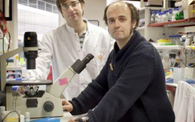 Investigadores. Andrés López-Contreras (izq) y Óscar Fernández-Capetillo (der). Foto: CNIO