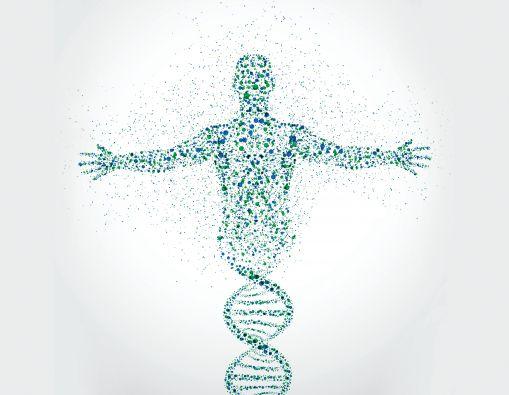 El entendimiento de los genes relacionados con las respuestas al placebo perfeccionar la investigación sobre sus diferentes reacciones.