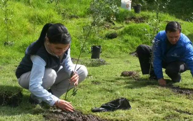 El movimiento Scout de Ecuador contribuirá con 7.000 jóvenes al Sembratón. Foto: Twitter / Ministerio de Ambiente.