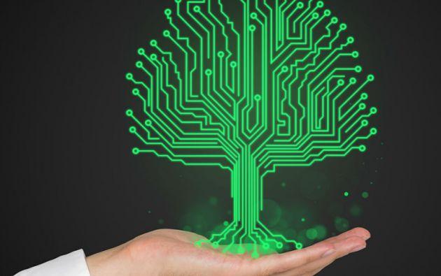 Greenpeace elogió los esfuerzos de gigantes como Apple, Facebook y Google, muy comprometidos en el uso de energías verdes.