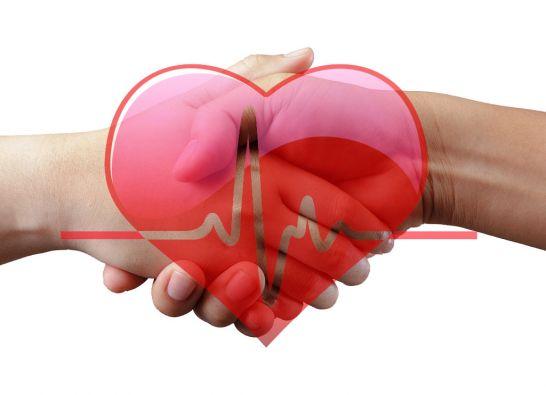 La fuerza o la debilidad de un apretón de manos permitirían predecir los riesgos de padecer una crisis cardíaca o un infarto cerebral.