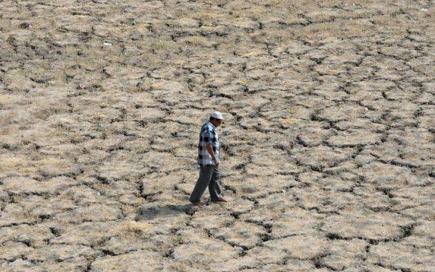 Ola de calor en India. Foto: AFP