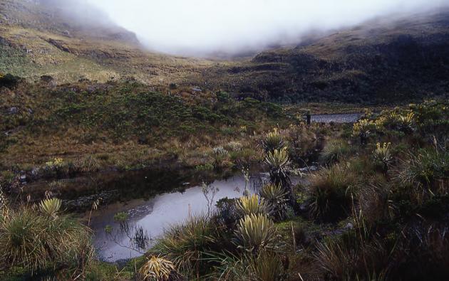 Los desaparecidos realizaban una expedición para alcanzar un campamento de exploración del proyecto minero Río Blanco.
