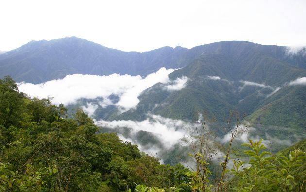 El vehículo en el que viajaban cayó por un barranco en la carretera hacia la zona tropical de los Yungas. Foto: Wikicommons.