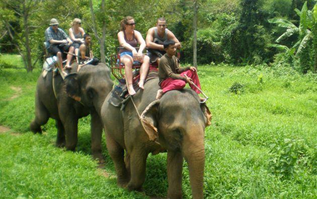 A diario, numerosos turistas acuden a campamentos especializados en ofrecer paseos en elefantes.