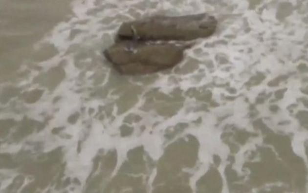 Las imágenes de hombres vestidos con trajes especiales y sacando del mar el cuerpo de una supuesta sirena.