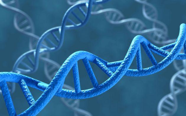 En la mayoría de los casos, las enfermedades raras ocurren por mutaciones de genes y pueden ser transmitidas de una generación a otra.