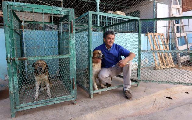 Jalal Kaal junto a dos perros rescatados. Foto: AFP