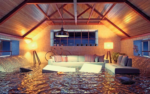 Es indispensable hacer una inspección general del lugar donde se vive para entender cómo fluye el agua en la propiedad.
