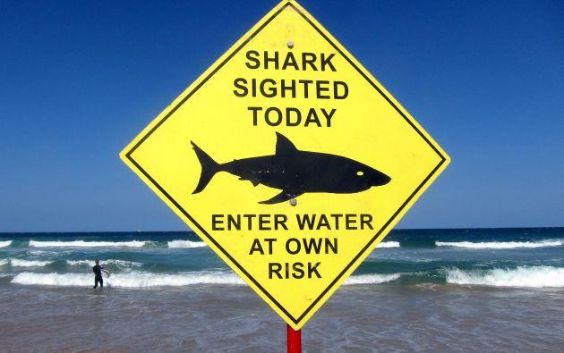 Una señalización en la playa de Manly (Sídney, Australia), advierte sobre el avistamiento de un tiburón en el agua. Foto: REUTERS.