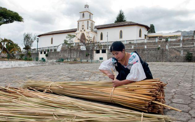 Saberes. Susana Hinojoza elabora esteras y artesanías con la totora que cosecha en las cercanías del lago San Pablo. La calidad del producto depende del corte y del secado de la fibra.