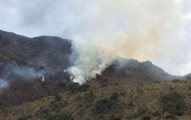 La zona del incendio es un páramo que cuenta con un bosque de pino y de polylepis, propio de la zona. | Foto: Internet
