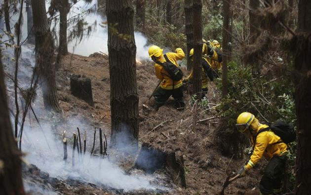 Aún 110 incendios se mantienen activos, de ellos, 49 fueron controlados, 60 se encuentran en combate y 1 extinguido,  Foto: EFE.