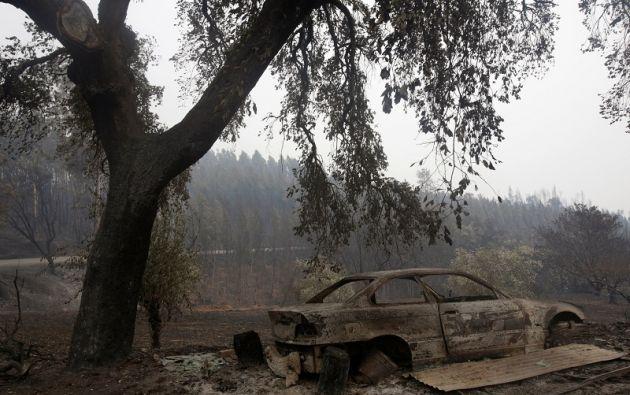 El fuego que causó la tragedia en el centro de Portugal comenzó este sábado por el impacto de un rayo en un árbol seco y se expandió con una rapidez. | Foto: Reuters.