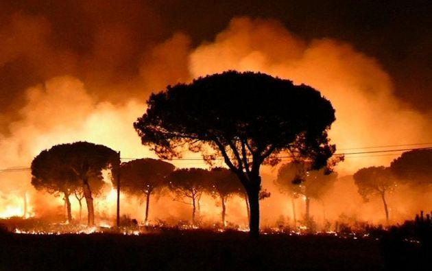 Cerca de 2.000 personas han sido evacuadas cerca del lugar del incendio, que amenaza la reserva natural de Doñana en España. Foto: Tomado del diario ABC