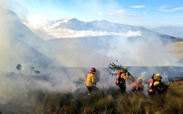 Según datos preliminares, las llamas se extendieron tras la quema de pajonal. Foto: Twitter Bomberos de Quito