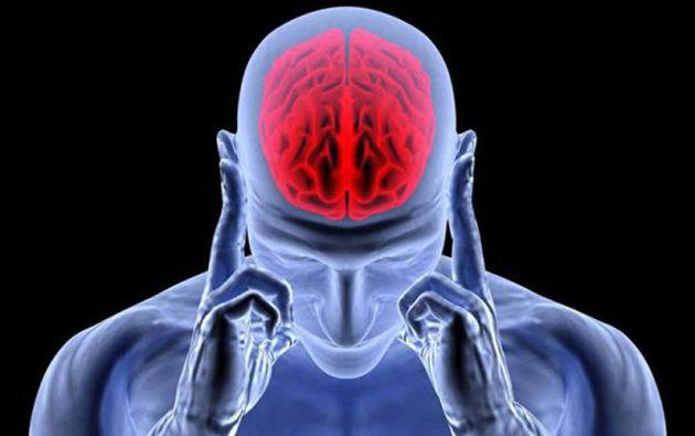 Los investigadores descubrieron que, en respuesta a las ofertas injustas, la actividad en dos áreas del cerebro, el hipocampo y la amígdala, se relacionó con síntomas de depresión. Foto: Internet