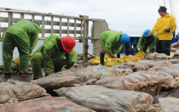 La nave zarpó desde Puerto Baquerizo Moreno, isla San Cristóbal, hacia las afueras de la reserva marina de Galápagos para realizar la destrucción de la pesca ilegal. Foto: El Ciudadano