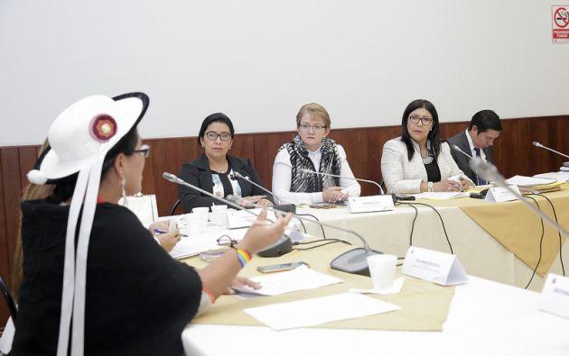 La comisión efectuó 18 sesiones y con la información recabada en las mismas y requerida a varias entidades, aprobó el informe de su investigación. Foto: Asamblea