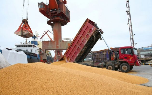 Una tercera parte de la producción de soja estadounidense se vende en China (14.000 millones el año pasado). Foto: AFP