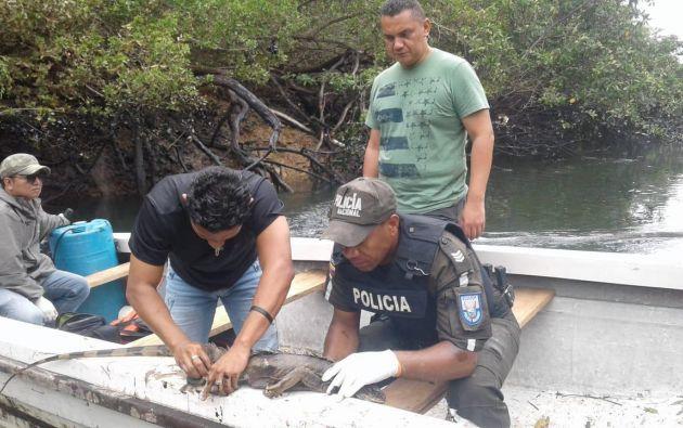 La Unidad de Vida Silvestre recorrió el sitio del derrame para constatar la afectación de la flora y fauna del sector. Foto: Twitter @MAEGuayas_DP