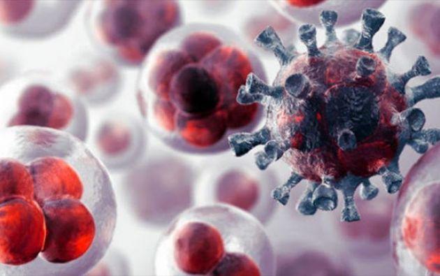 El cáncer se desarrolla cuando el control normal por el cuerpo de las células deja de funcionar. Foto: laverdadoculta.com.ar