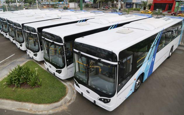 Los buses eléctricos fueron adquiridos en China.
