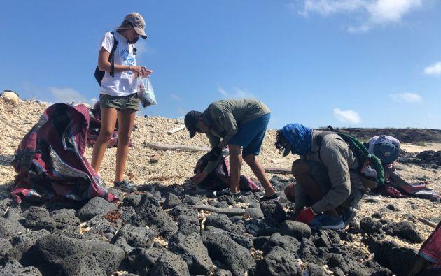 4,6 toneladas de basura fueron retiradas de las costas de Galápagos. Foto: Twitter @parquegalapagos