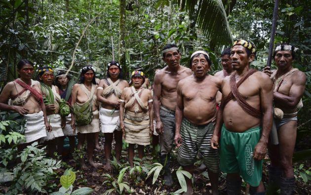 Los indígenas Waorani cantan para agradecer a la naturaleza en la cascada sagrada Teata, cerca de la aldea de Nemompare, a orillas del río Curaray, en la provincia de Pastaza. Foto: AFP