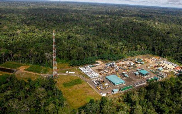 El Parque Nacional Yasuní, ubicado en la región oriental del país y en plena Amazonía ecuatoriana, acuna una de las mayores reservas de especies de todo el planeta.