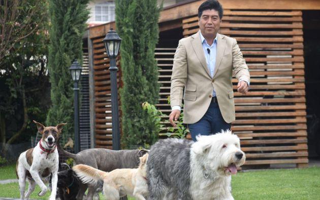 """El Municipio de Quito se convertiría en la primera institución pública """"Pet Friendly"""" del Ecuador. Foto: Cortesía."""