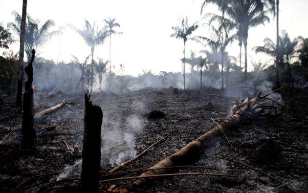 Los focos de incendios forestales en Brasil han aumentado este año 83%. Foto: Reuters